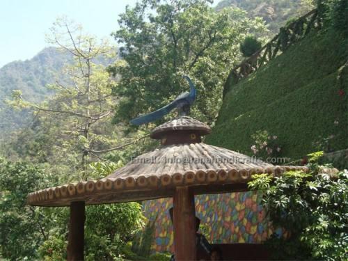 peacock-sculpture